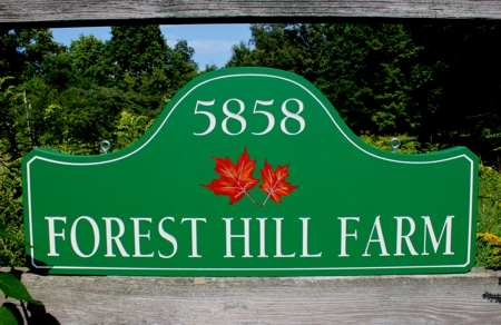 Custom wood sign with hand painted fall foliage